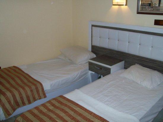 Palm Garden: Room