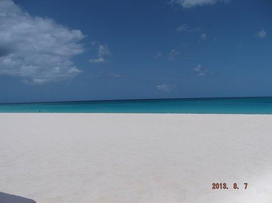 Bucuti & Tara Beach Resort Aruba: Beautiful Quiet Beach in front of Bucuti