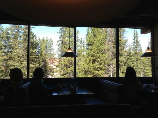 Lake Louise Village Grill & Bar: Booth-to-ceiling windows on one side are filled with a view of pine trees.