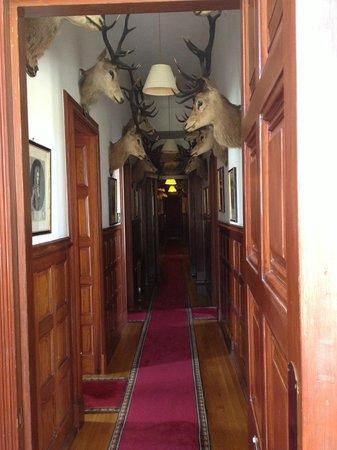 Mar Lodge Estate: Derry apartment corridor