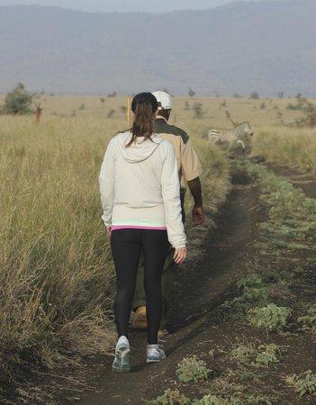 Lewa Safari Camp: Walking Safari