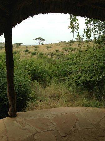 Lewa Safari Camp: View from tent