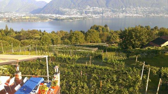 Piazzogna, Suisse : Aussicht vom Familienzimmer auf den Lago Maggiore
