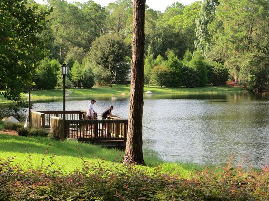 Fishing area picture of the campsites at disney 39 s fort for Fishing at disney world