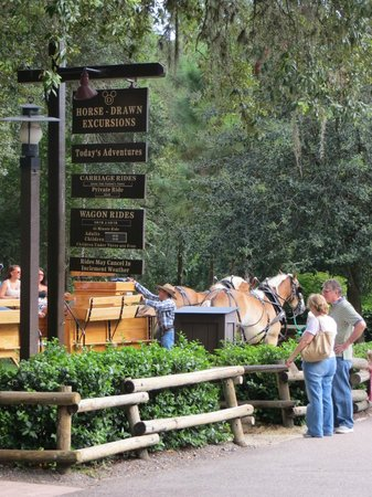 The Campsites at Disney's Fort Wilderness Resort : Wagon rides at night