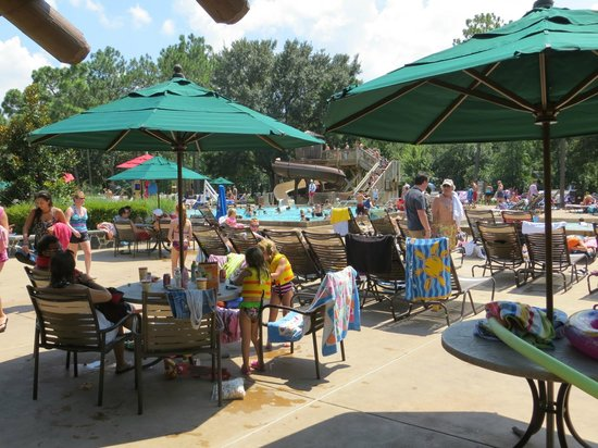The Campsites at Disney's Fort Wilderness Resort: A packed pool