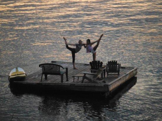 Heron House: Floating Dock