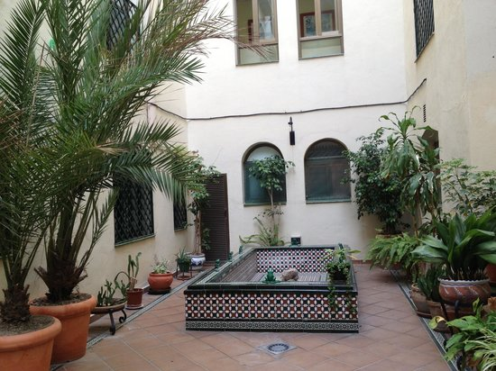 Mediterraneo Apartments: the courtyard