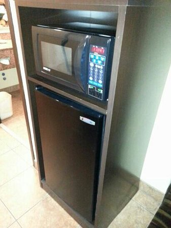 Holiday Inn Express Hotel & Suites Ft. Lauderdale Airport/Cruise : fridge and microwave
