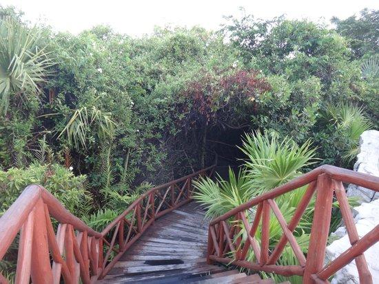 Iberostar Paraiso Maya: Bridge over lazy riverr