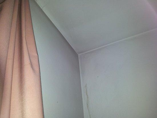 Residenze Sonnenschein : muffa sui muri