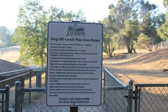 Kennedy Tailing Wheels Park: New off-leash dog area at Kennedy Tailing Wheel Park