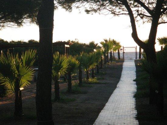 Argentario Camping Village: vialetto di accesso al mare