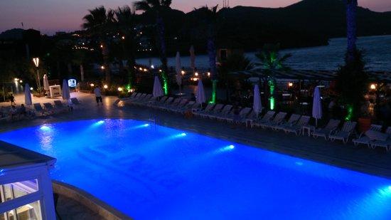 Delta Beach Resort: pool at night