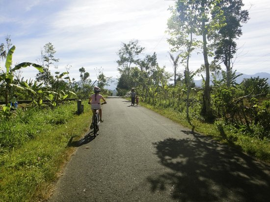 Buahan, Indonesia: Bicycle trip to Batur