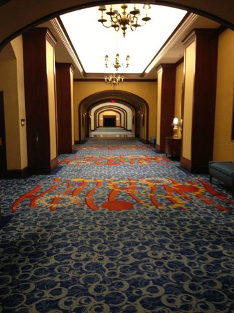 Renaissance Portsmouth-Norfolk Waterfront Hotel : Long hallway to the elevators
