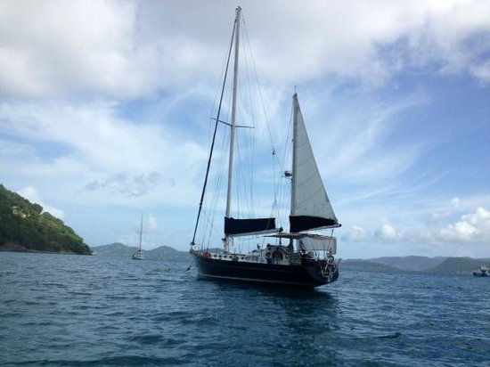 Alaunt Charters day sails: photo of alaunt by capt sharon