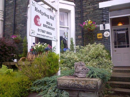 Hedgehog Hill: The front garden