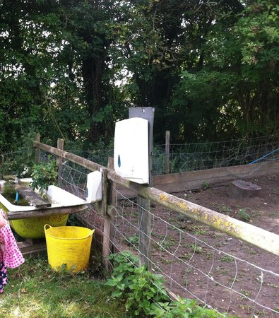 MOO Play Farm: Petting area handwashing