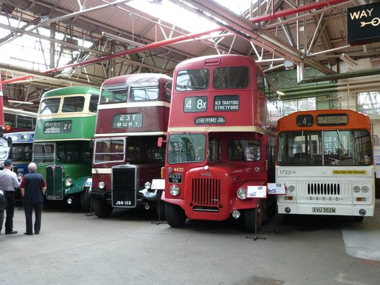 Museum of Transport: Buses