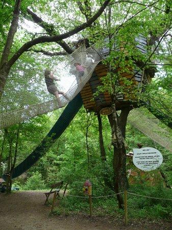Le Bois des Lutins : grimpette dans les arbres