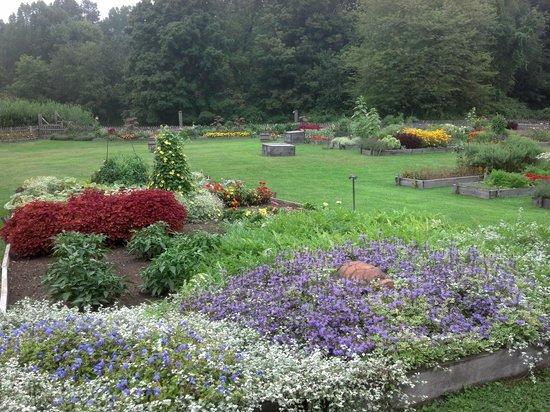 Sharpe Hill Vineyard : garden