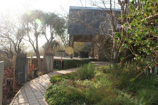 Mokolodi House: entryway