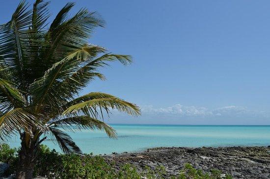Anantara Medjumbe Island Resort: vista