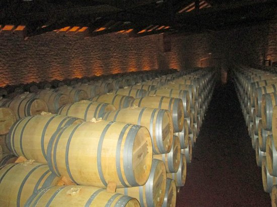 Bodegas Muga: Oak barrels for fermentation