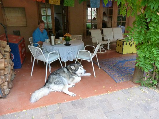 Dunshee's Casita: Brio joining us at breakfast