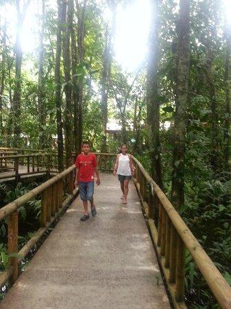 Evergreen Lodge: Pasillos alrededor de las habitaciones