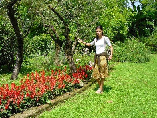 La Casa di Albertina Bed & Breakfast: giardino