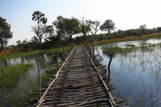 """Macatoo Horseback Safari Camp : """"Bridge"""" to camp"""