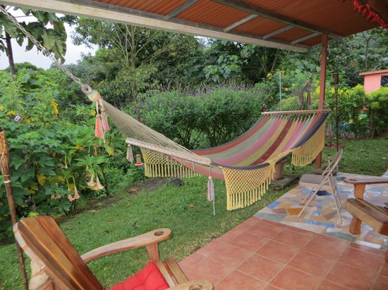 Another view - we spent many lazy hours in these hammocks