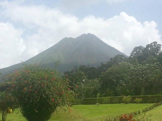 Hotel El Silencio del Campo: vista al volcan