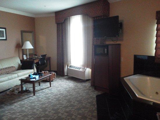 Comfort Suites Oceanside Marina: room