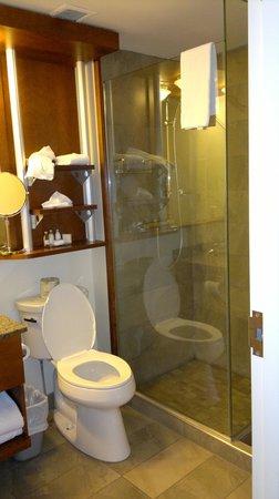 Hotel & Suites Le Dauphin Quebec: impressive bathroom