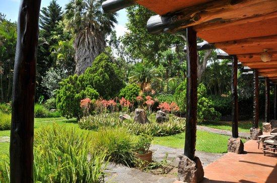 Hotel and Restaurant Bambu: Jardines del Hotel Bambú desde la habitación