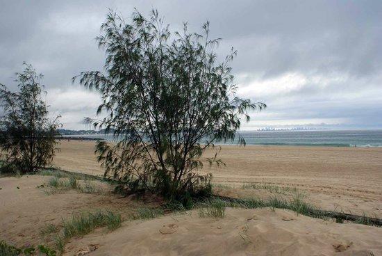 Coolangatta Beach: along the beach at Coolangatta