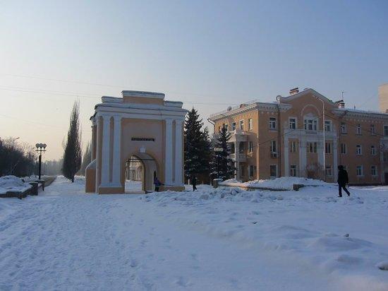 Tara gates