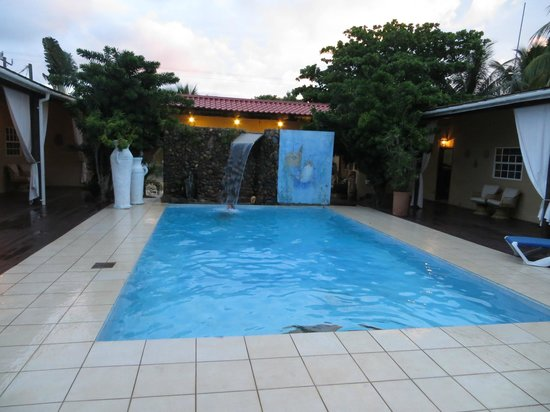 Parrot Cove Lodge: pool deck