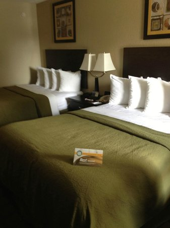 Quality Inn Daytona Speedway: Room with 2 beds