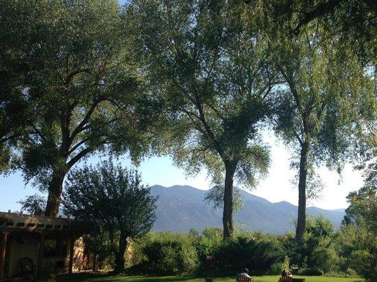 Hacienda del Sol: Courtyard View