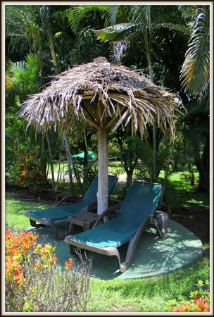 Occidental Papagayo - Adults only: beach chair