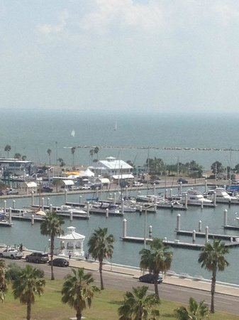 Best Western Corpus Christi: View from room on 10th floor