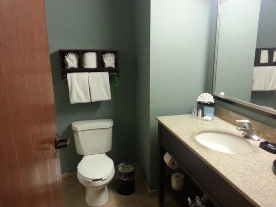 Hampton Inn and Suites Nashville Franklin (Cool Springs): standard Hampton bath