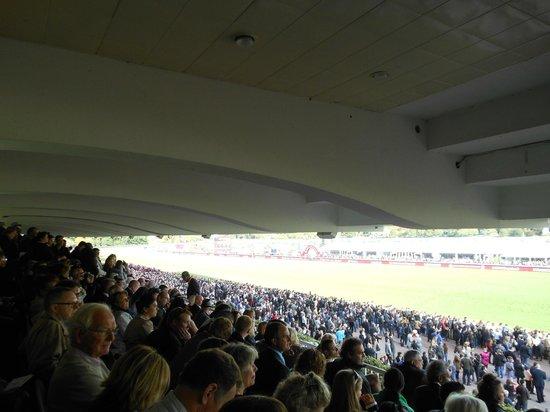 Longchamp Racecourse: 自由席はこんな感じ
