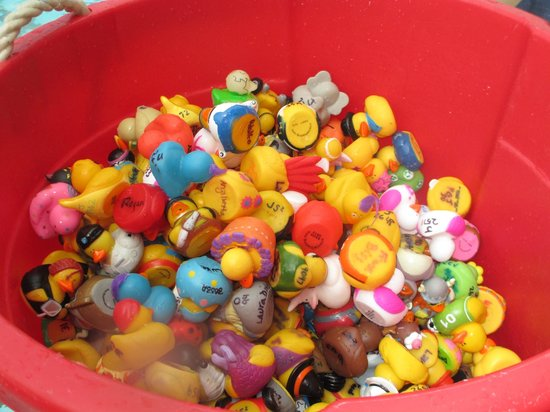 Villa Roma Resort and Conference Center: duck races