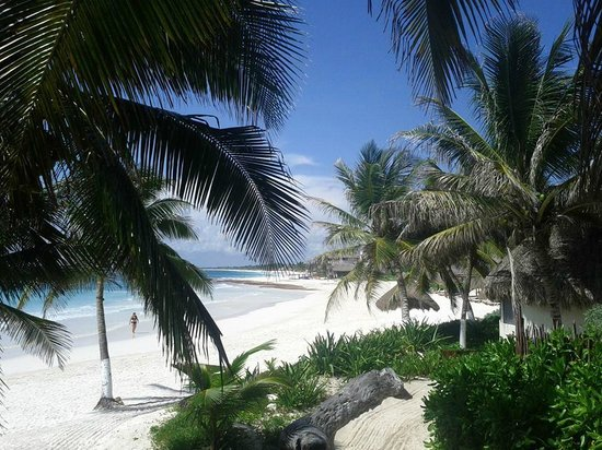 Maya Tulum Resort: Beach as seen from restaurant balcony
