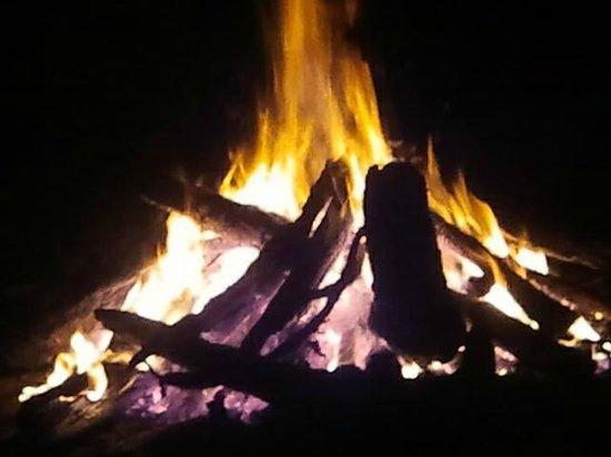 RafJam's Bed & Breakfast: Bonfire at Rafjam